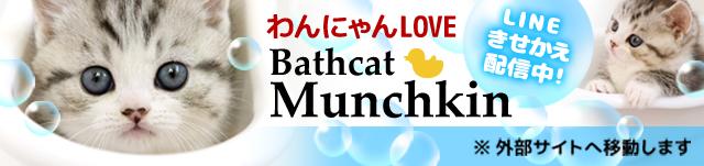 Bathcatマンチカン